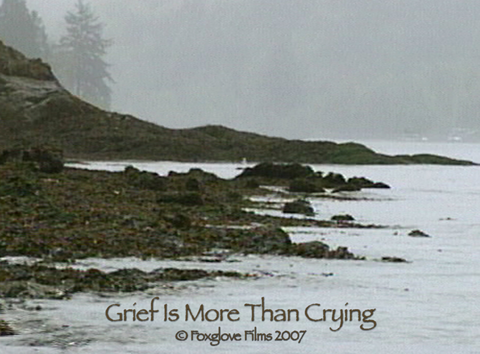 a grief observed study guide